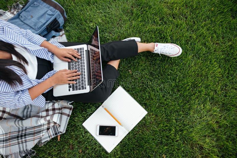 学生女孩播种的照片,使用膝上型计算机,坐草, o 库存图片