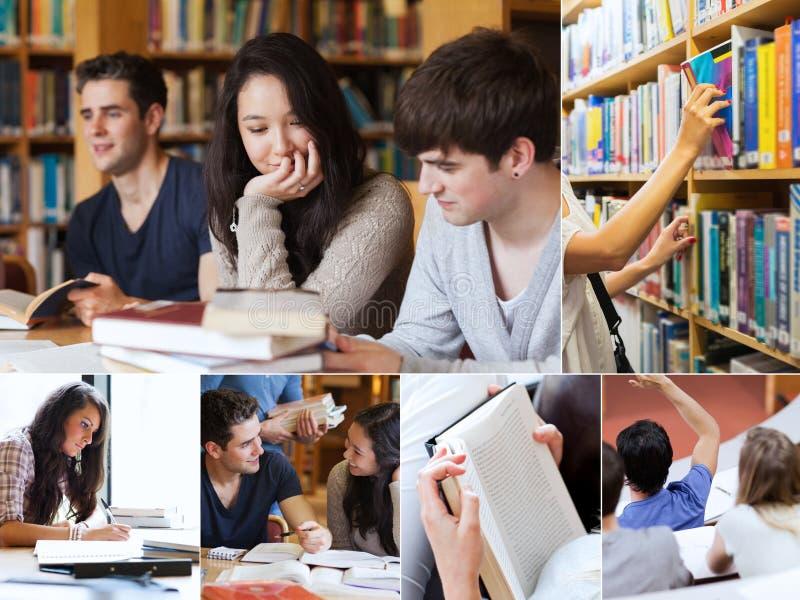 学生拼贴画在图书馆里 库存图片