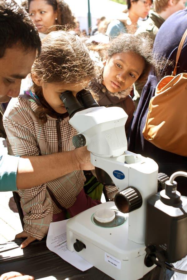 年轻学生通过数字式显微镜注视着亚特兰大科学展览 库存图片
