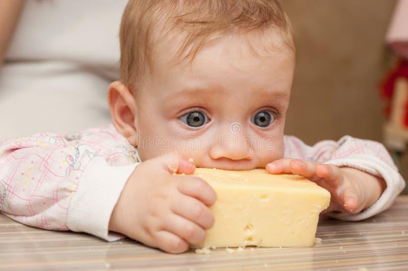 婴孩喜欢鲜美乳酪片断  图库摄影