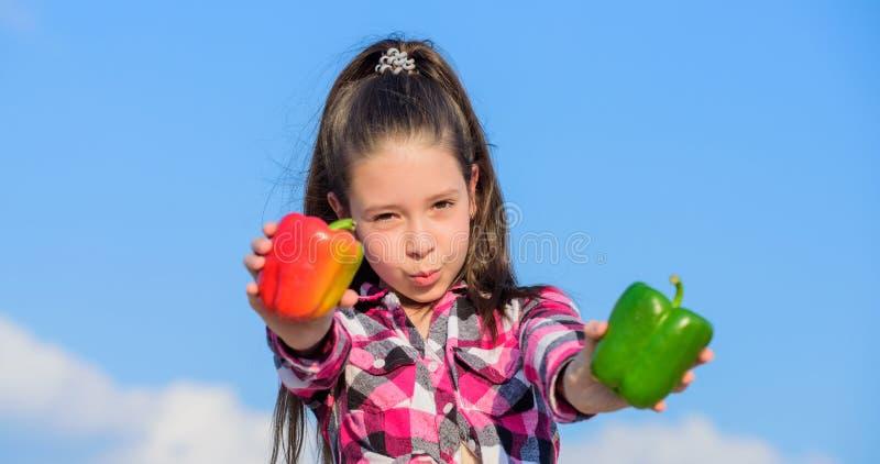 选择哪些 供选择的决定概念 孩子女孩举行红色和青椒天空背景 孩子举行成熟胡椒 库存照片