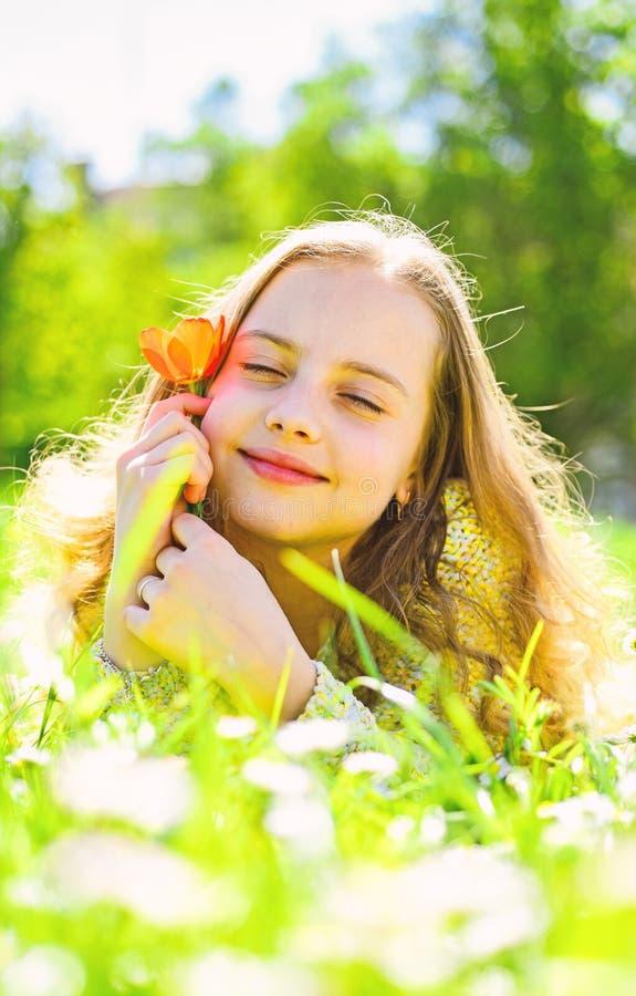 孩子享受春天晴天,当说谎在草甸时 梦想的面孔的女孩拿着红色郁金香花,享受芳香 季节性 免版税库存图片