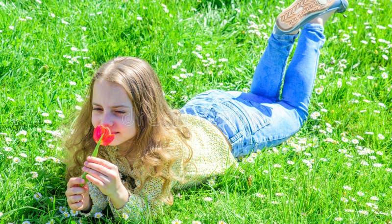 孩子享受郁金香芬芳,当说谎在草甸时 过敏概念 有说谎在grassplot,草的长的头发的女孩 免版税库存图片