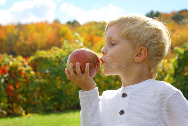 孩子亲吻的苹果计算机在秋天天 免版税库存图片