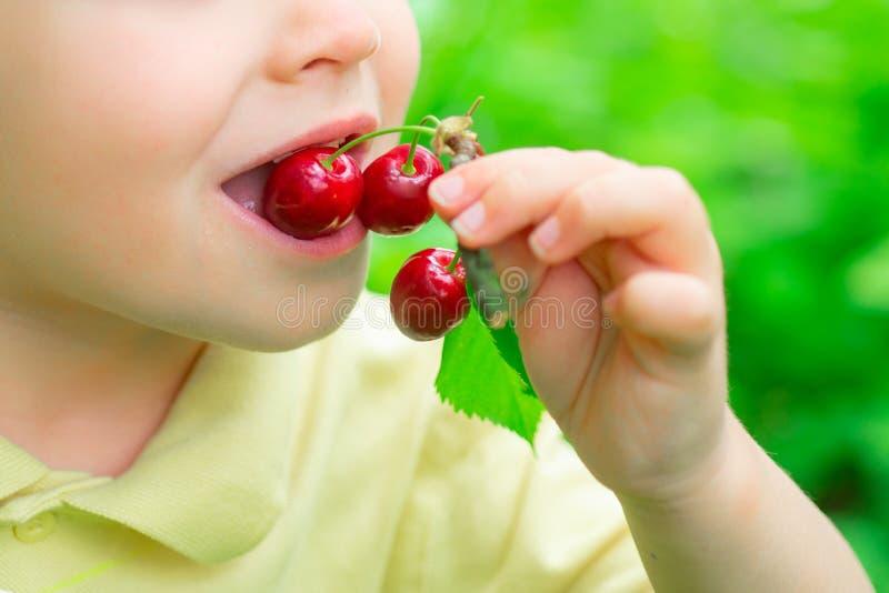 孩子吃樱桃 r 果子在庭院里 孩子的维生素 自然和收获 免版税库存照片