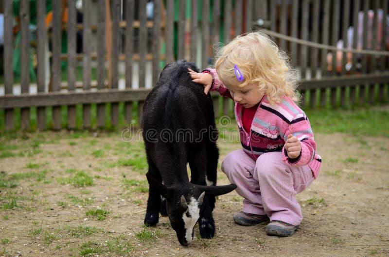 孩子和山羊 图库摄影