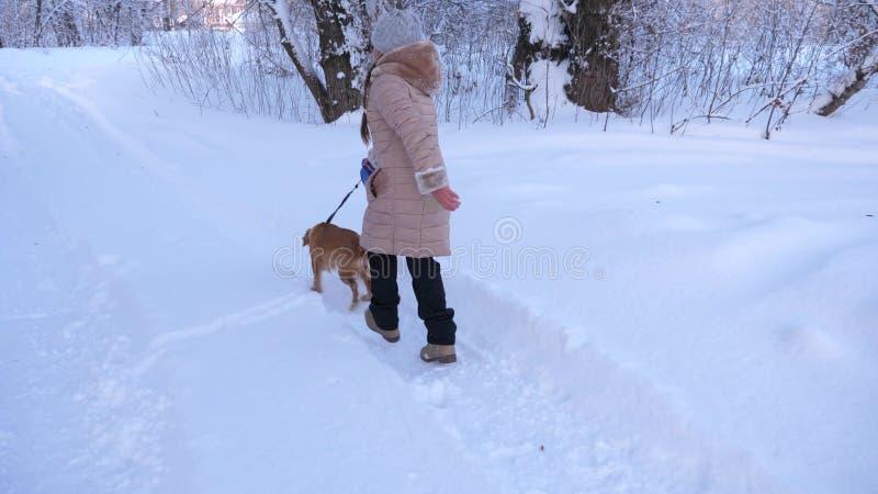 孩子和狗沿在使用与在雪的狗的冬天森林女孩的道路走在冬天在公园 免版税库存图片