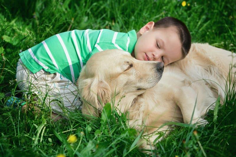 孩子和金毛猎犬 库存图片