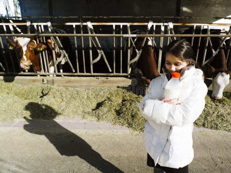 孩子喝新鲜的牛奶,从在一个农场的瓶,在Th后 库存图片