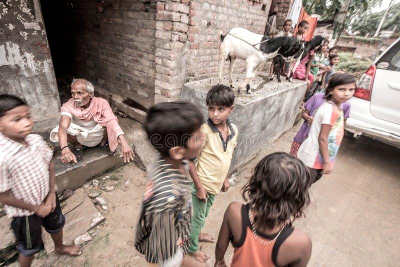 孩子在乡村在印度 免版税库存图片