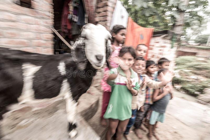 孩子在乡村在印度 免版税库存照片