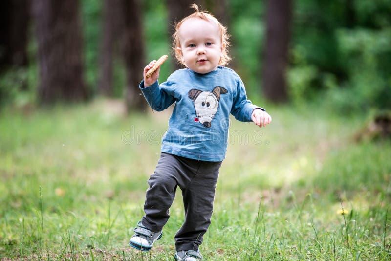 孩子在公园森林里 免版税库存图片