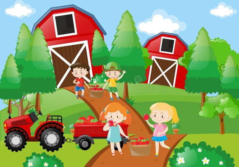 孩子在农场摘果子 库存例证