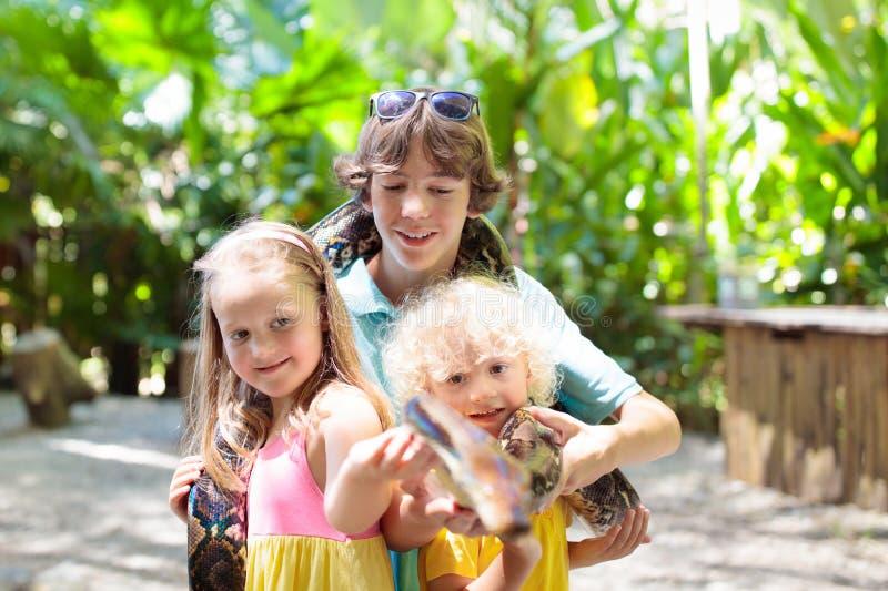 孩子在动物园拿着Python蛇 孩子和爬行动物 免版税库存图片