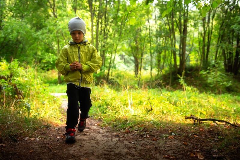 孩子在单独森林公园 免版税库存照片