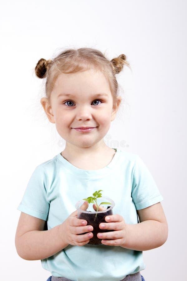 孩子在手上的拿着年幼植物 图库摄影