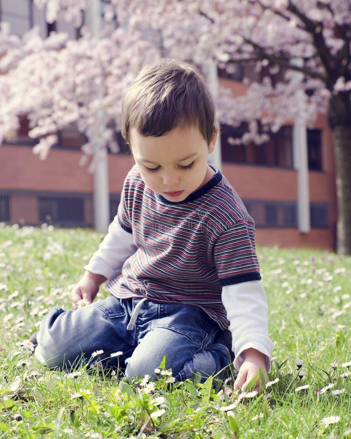 孩子在春天公园 库存图片
