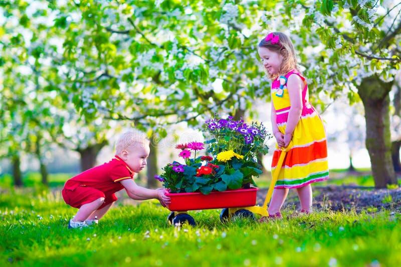孩子在有开花的樱桃树的一个庭院里 图库摄影