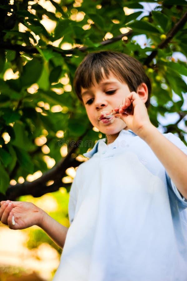 孩子在树的树荫下吃冰淇凌 免版税库存图片