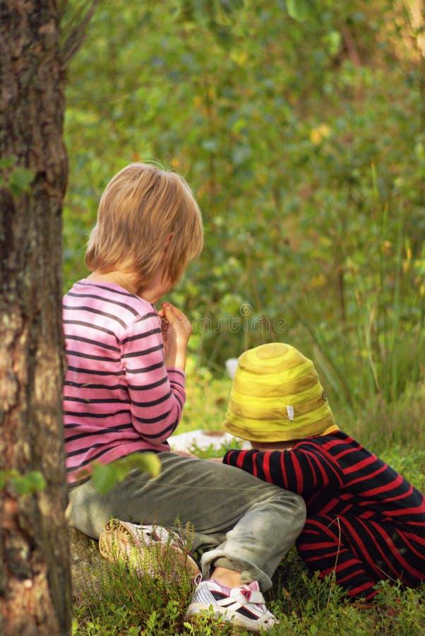 孩子在森林里 免版税图库摄影