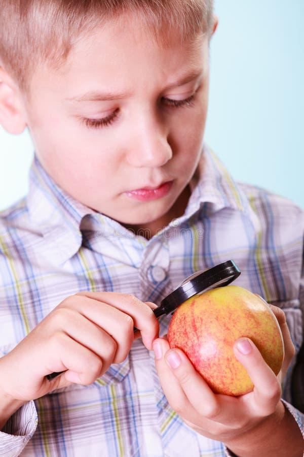 孩子审查与放大镜的苹果 库存照片