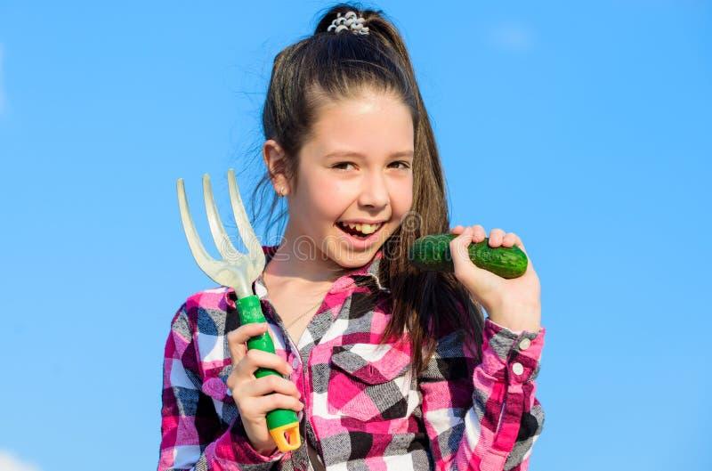 孩子快乐的花匠拿着犁耙和黄瓜蓝天背景 有手犁耙的女孩花匠 从事园艺和 免版税库存照片