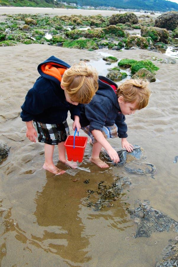 孩子探索与红色桶的浪潮水池 库存照片