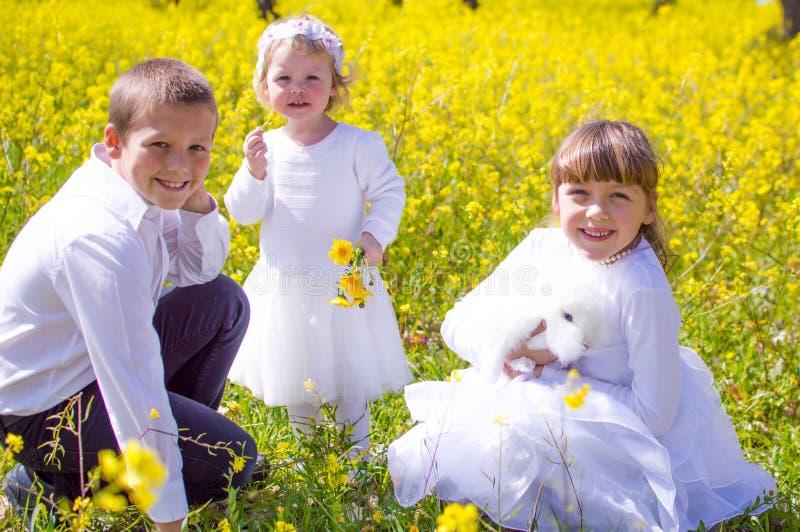 孩子用宠物兔子 图库摄影