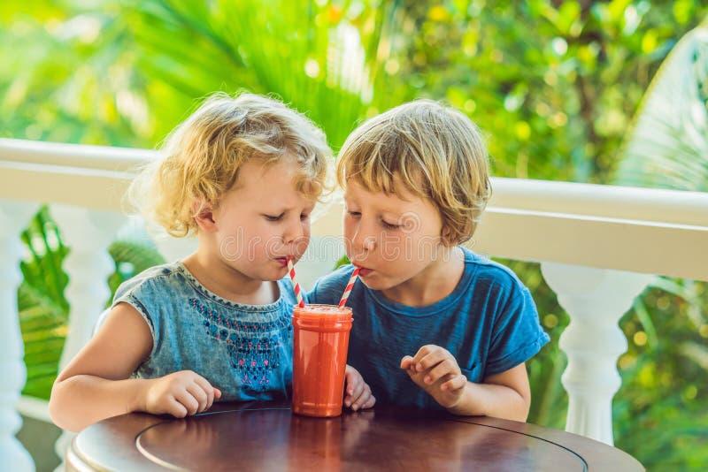 孩子男孩和女孩喝从番木瓜的橙色圆滑的人 免版税库存照片