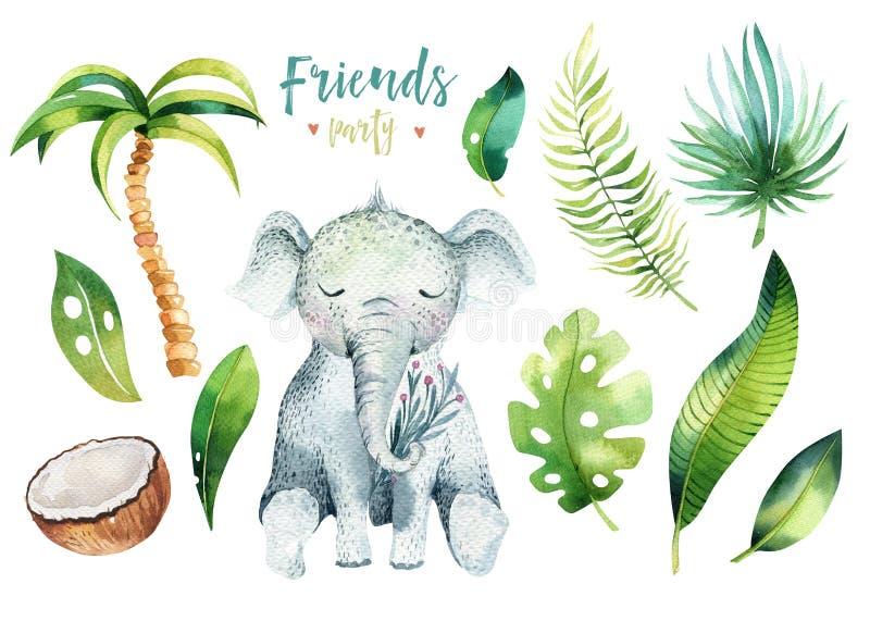孩子的小动物托儿所被隔绝的例证 水彩boho热带图画,儿童逗人喜爱的热带乌龟 向量例证