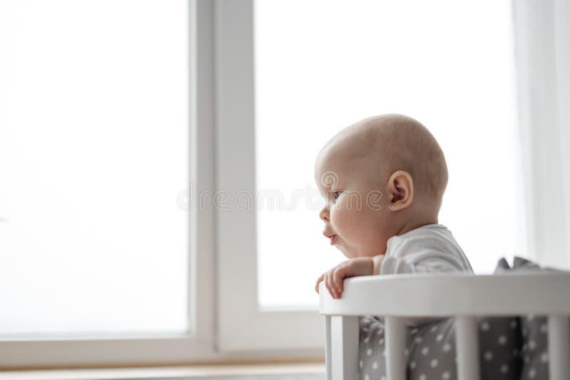 孩子的情感 小儿童的大蓝眼睛的逗人喜爱的肥满胖的面颊一个惊奇的滑稽的表示  免版税库存照片