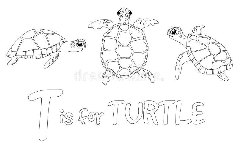 孩子的着色页-乌龟 库存图片