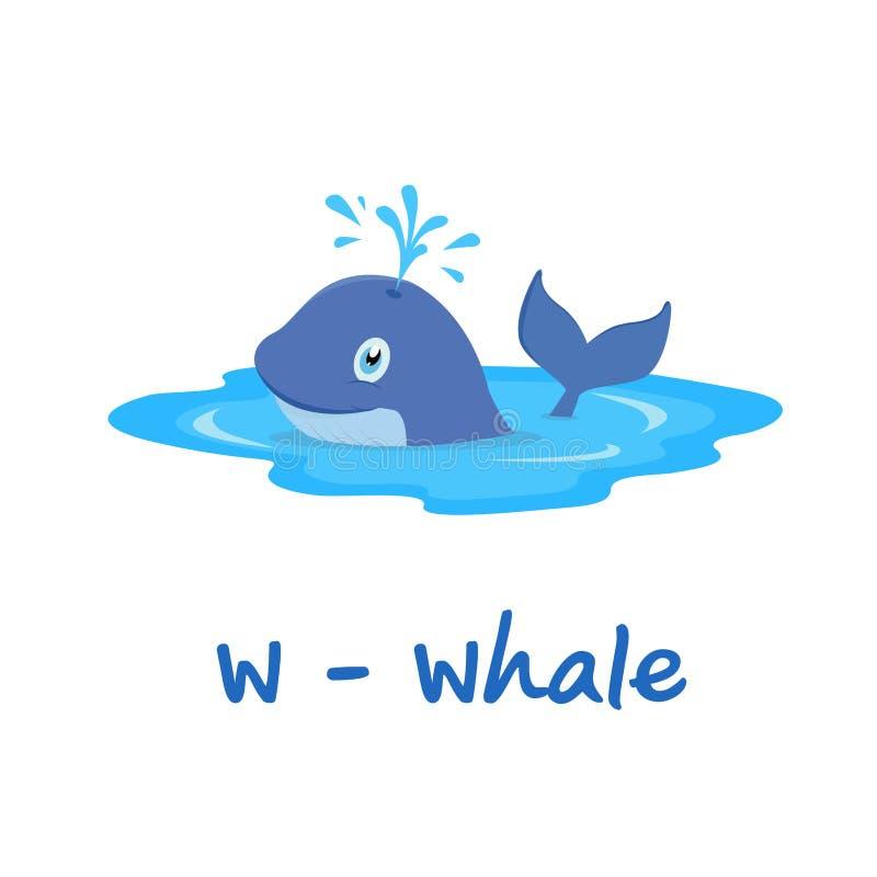 孩子的被隔绝的动物字母表,鲸鱼的W 皇族释放例证