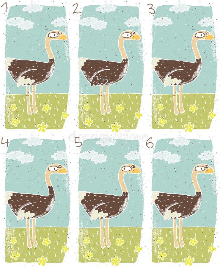 驼鸟视觉比赛 库存例证