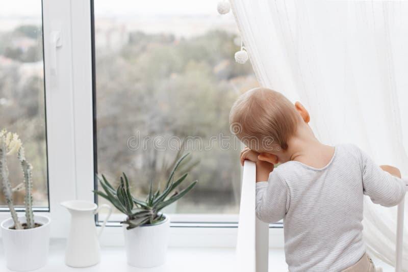 孩子看窗口 免版税库存照片