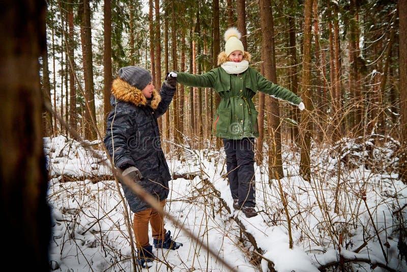 孩子走在雪森林里的男孩和女孩在一个冬日 少年有旅行和休息在室外的周末 免版税库存照片