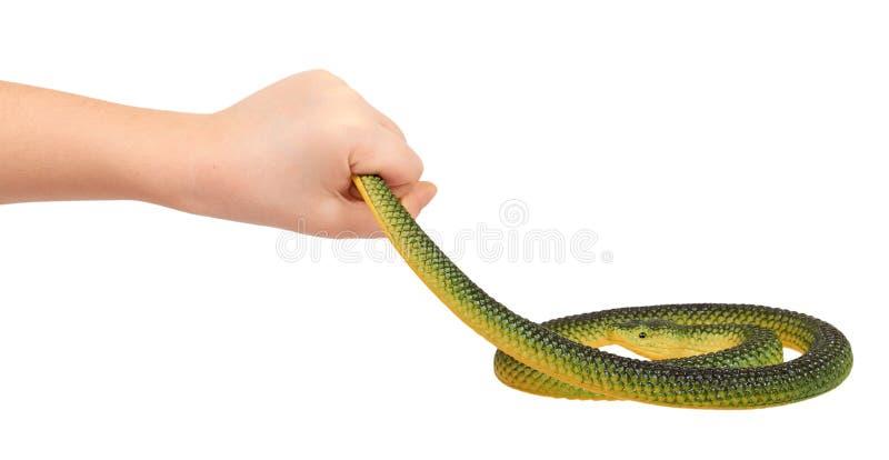 孩子递与假翠青蛇,橡胶动物玩具 库存照片