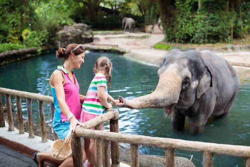 孩子饲料大象在动物园里 在野生动物园的家庭 免版税库存图片