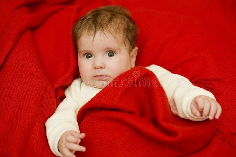 年轻婴孩画象 免版税库存照片