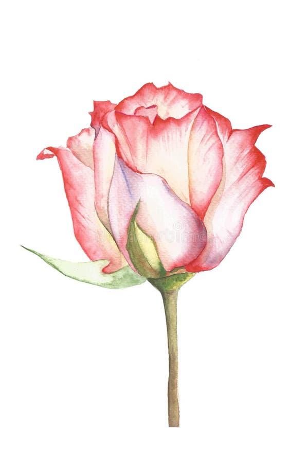 它是您的未来卡片`玫瑰色` 库存例证