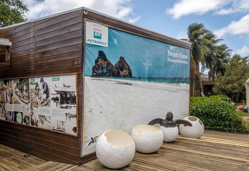 它玛项目Projeto它玛在Boldro村庄-费尔南多・迪诺罗尼亚群岛, Pernambuco,巴西总部设 库存图片