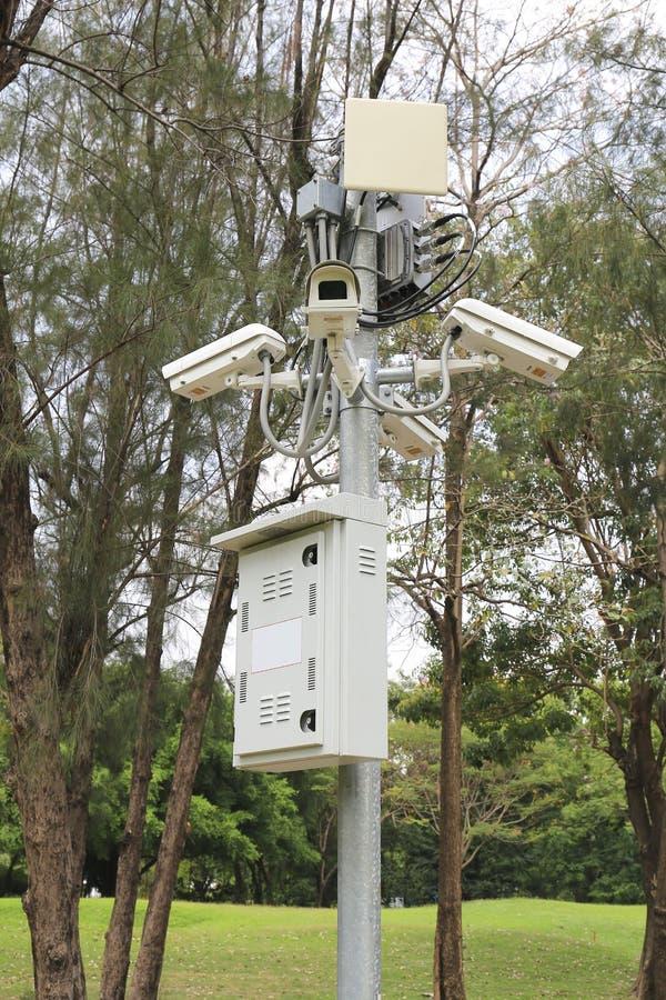 安全监视器临近绿色森林 免版税库存照片