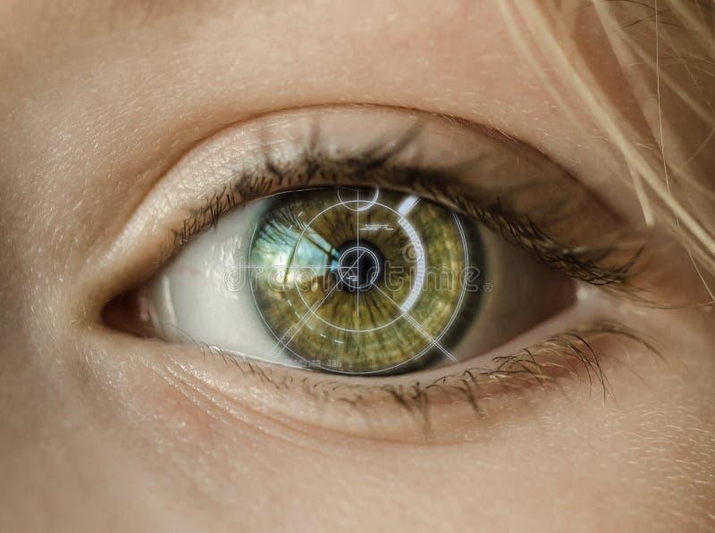安全视网膜扫描器 免版税库存图片