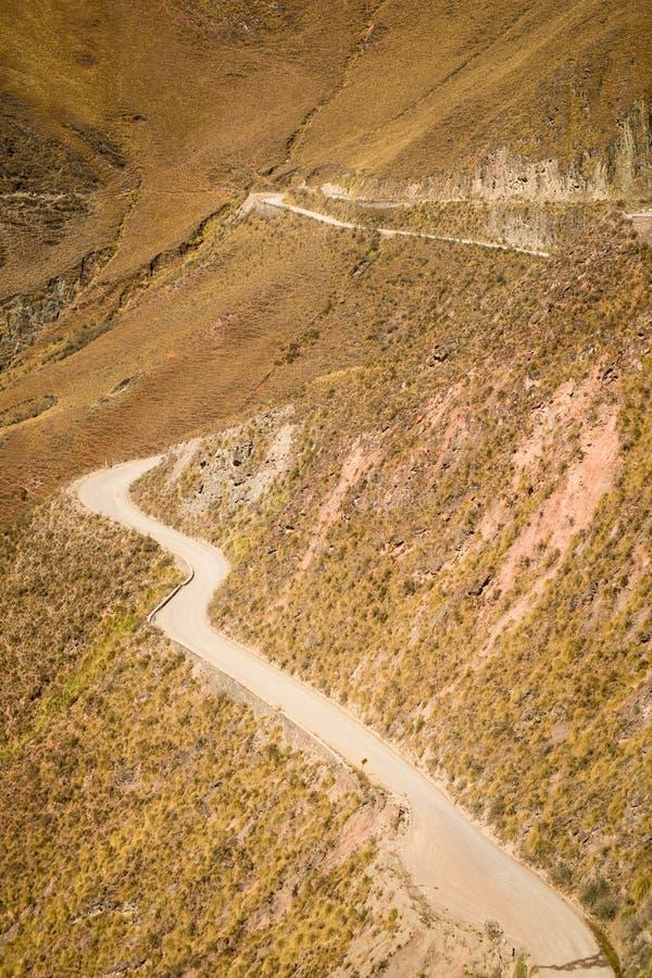 安地斯山的路 库存照片
