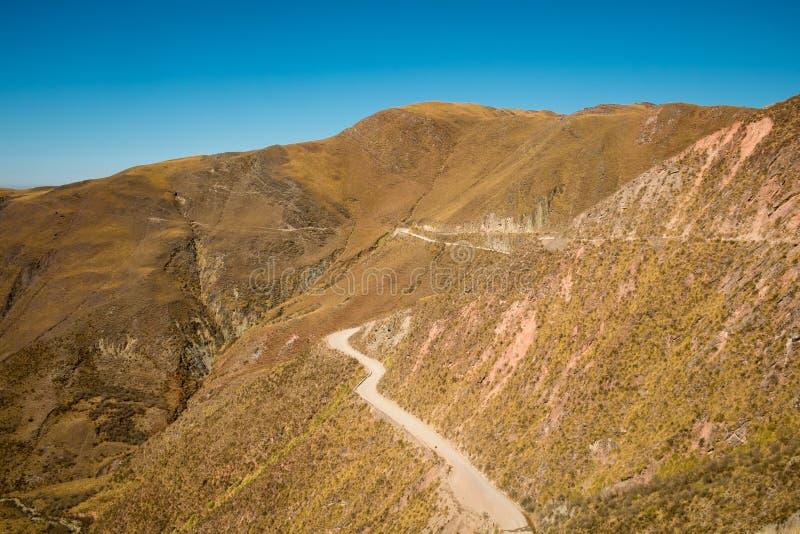 安地斯山的路 免版税库存照片