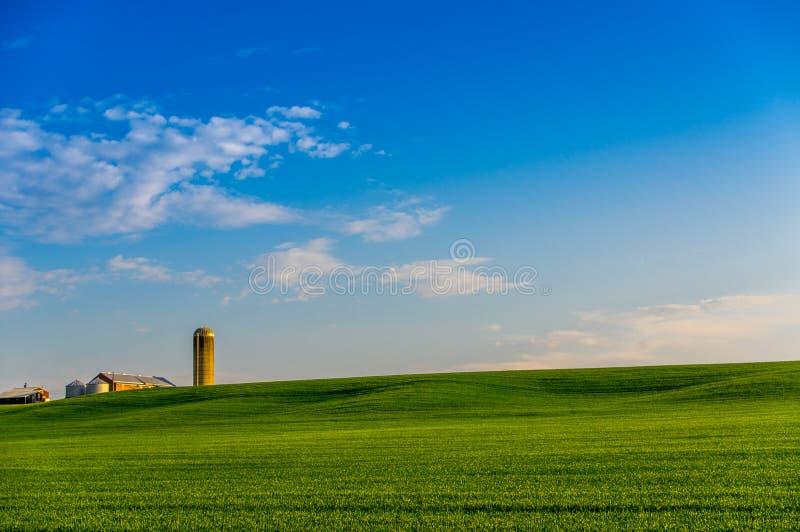 安大略农场土地 免版税库存照片
