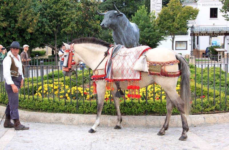 安大路西亚斗牛场在朗达附近装饰了马 免版税库存图片
