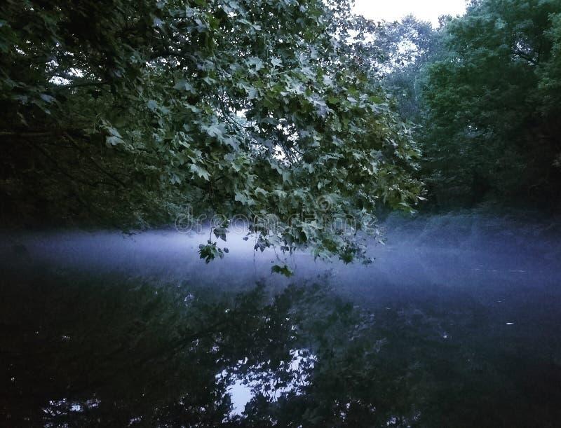 安定在河的雾 库存图片