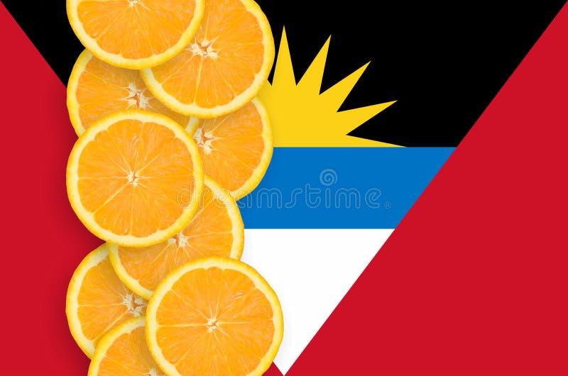 安提瓜和巴布达旗子和柑桔切片垂直的行 库存照片