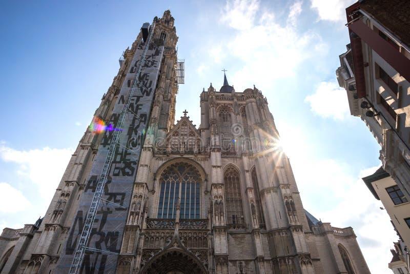 安特卫普圣母大教堂安特卫普比利时 免版税库存照片